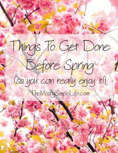 3 Things To Get Done Before Srping (so you can really enjoy it!)