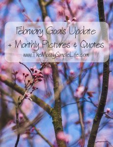 February Goals Update + Pictures & Quotes
