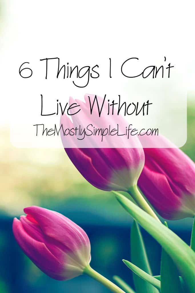 6 things I can't live without - fun list!