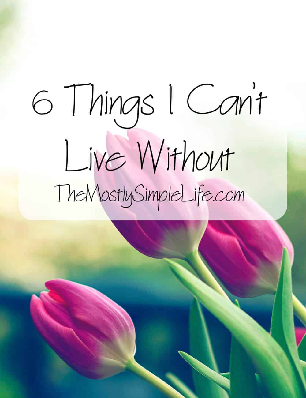 6 Things I Can't Live Without