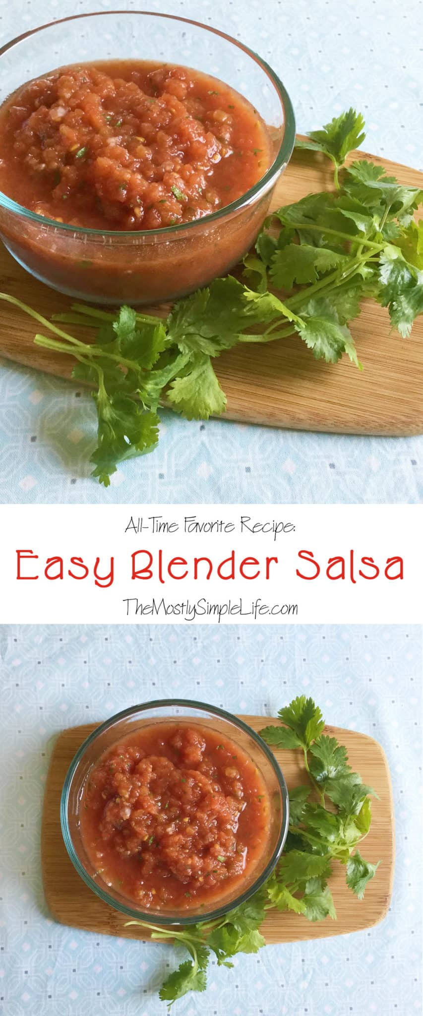 This homemade salsa recipe is my favorite! It\'s so easy and super quick to make in the blender. It tastes so fresh even though I cheat and use a few canned ingredients. I make it every time people come over and people rave about it!