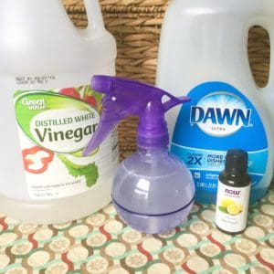 The Only 2 Natural Cleaning Recipes You Need: All Purpose Cleaner