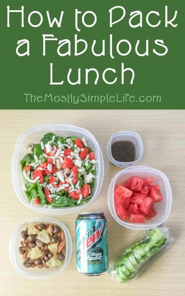 How to Pack a Fabulous Lunch: Save money on food by packing a sack lunch to bring to work or school. Great sack lunch ideas for a delicious and nutritious lunch. Pin and save these ideas for later!