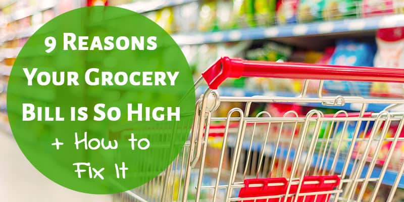 9 Reasons Your Grocery Bill is Too High + How to Fix It