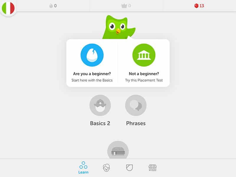 Frugal Ways to Learn a Foreign Language - Duolingo