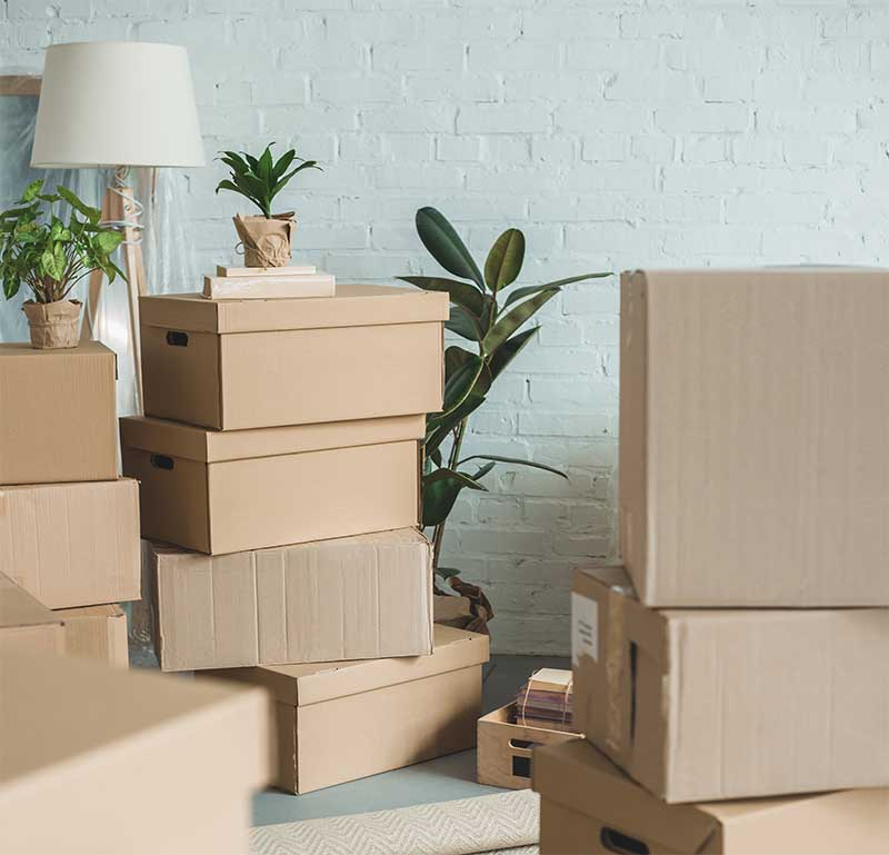 moving boxes in living room